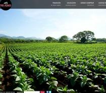 www.teamo-cigars.com